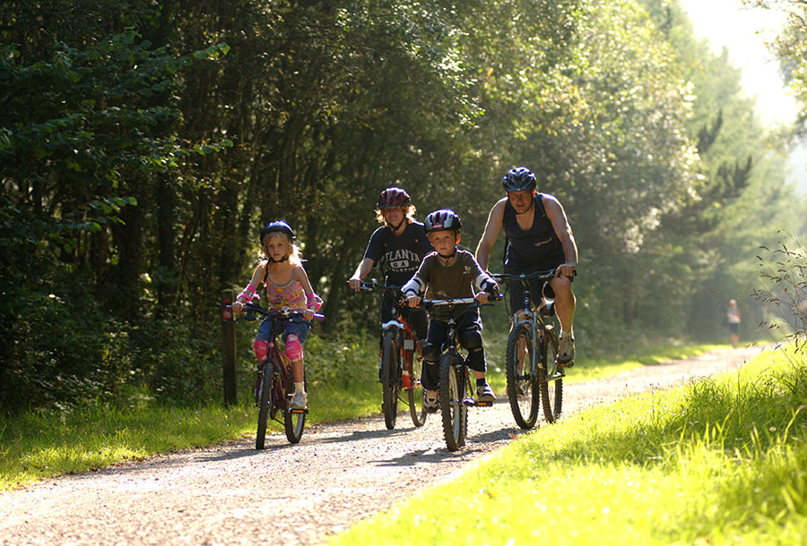 Afan Forest Family Cycling