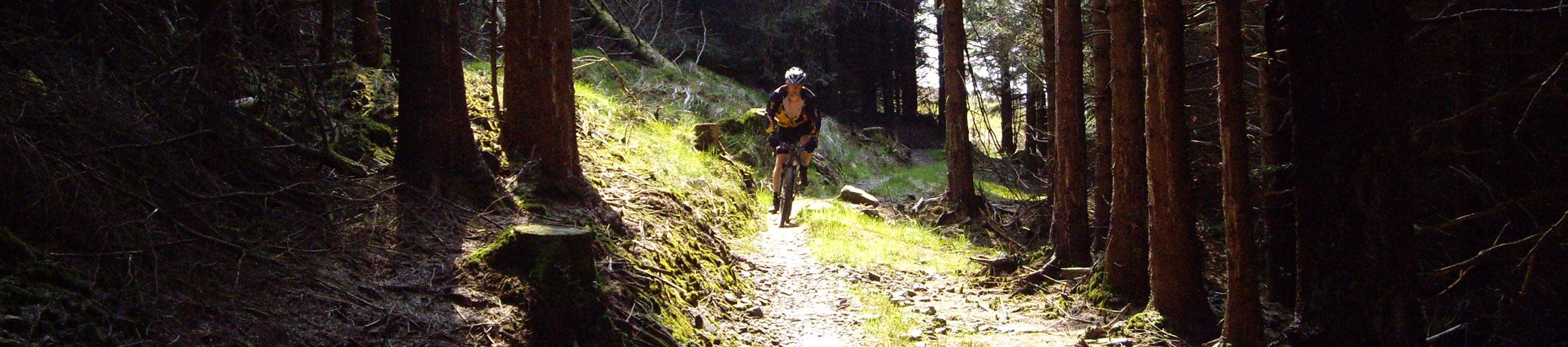 Typical Day Mountain Biking