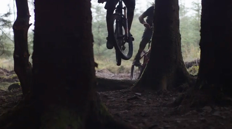 Bike Park Wales Trails