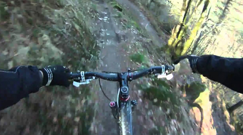 Brechfa Mountain Bike Trails